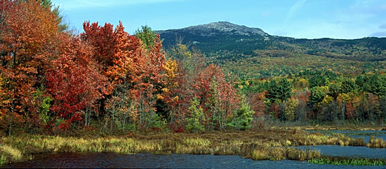 Mount Monadnock Fall